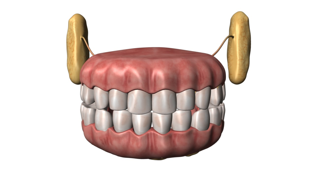 mouths teeth 3d model
