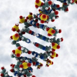 3dsmax dna molecule