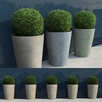 shrubs pots 7 3d max