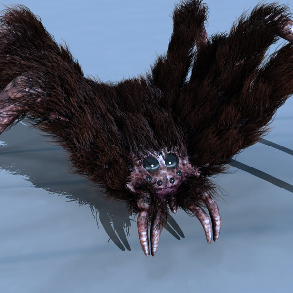 maya scary spider