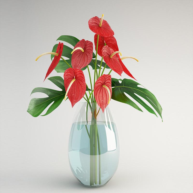 3d model anthurium flower plant