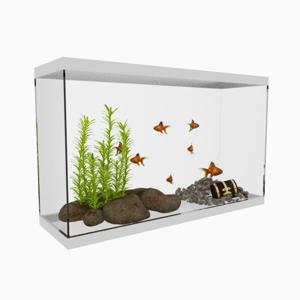aquarium water plants max