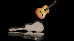 guitar - case worn 3d model