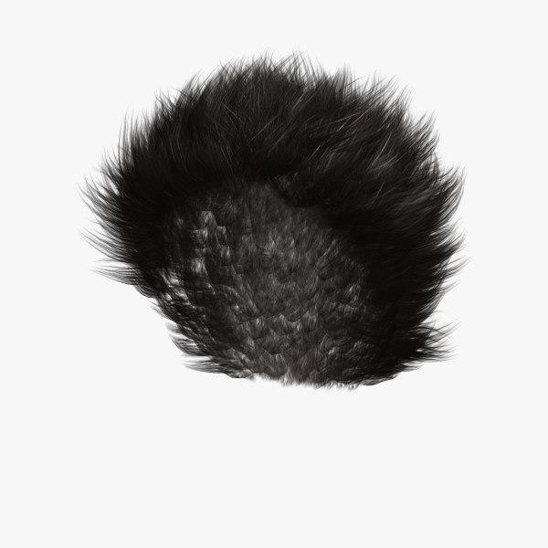 donald hair max