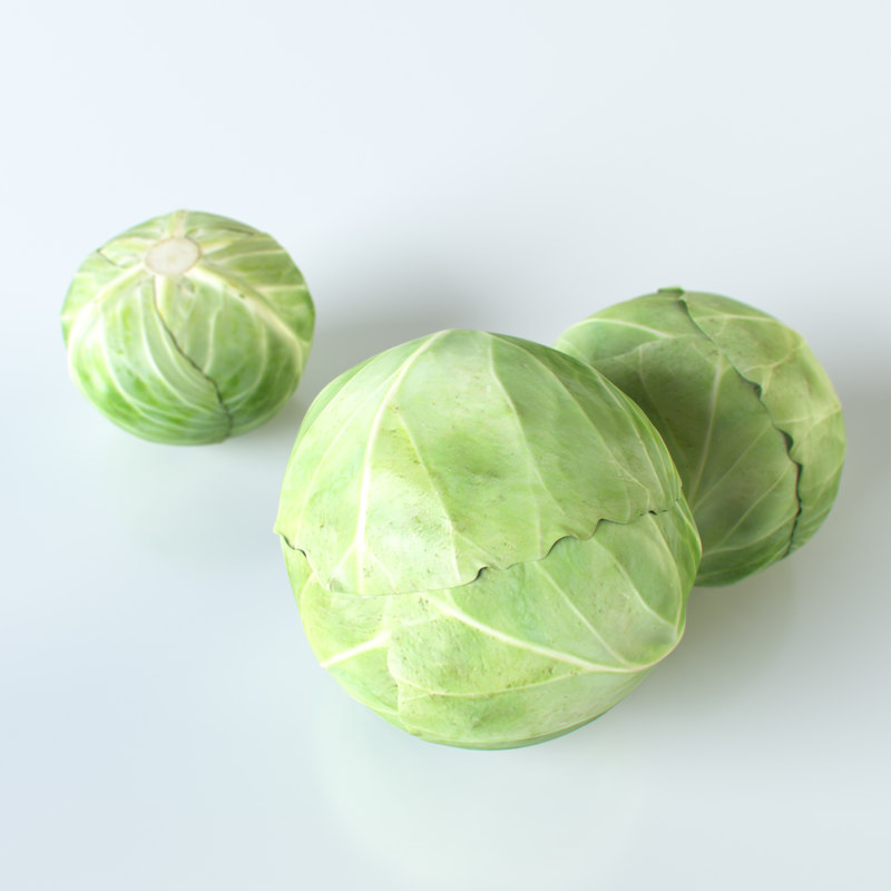 max cabbage
