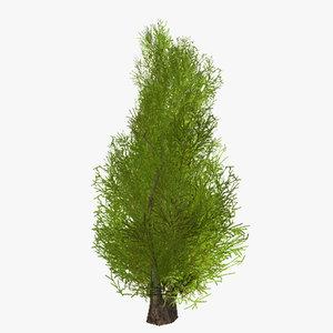 plant 02 max