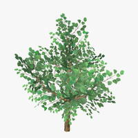 3d model plant 04