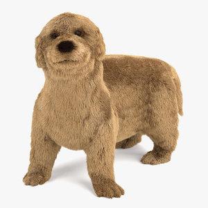 3ds max golden retriever puppy