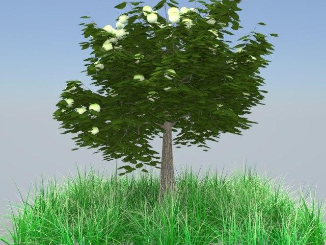 tree flower 3d max