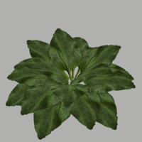 bush 3 3d model