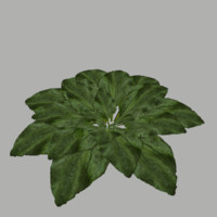 3dsmax bush 4