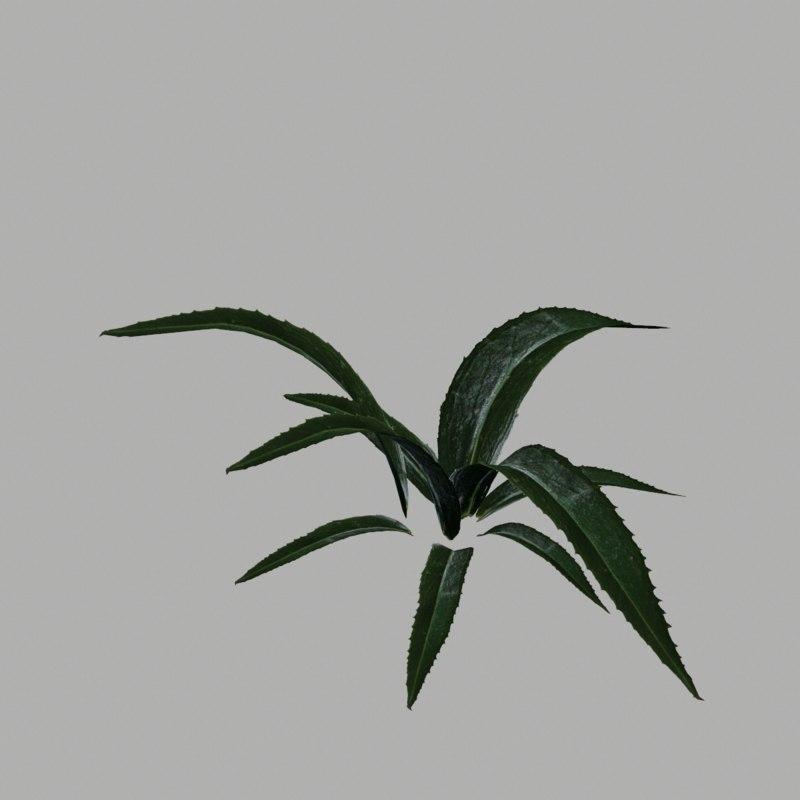 3d model bush 8