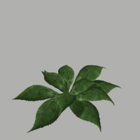 3d model bush 11