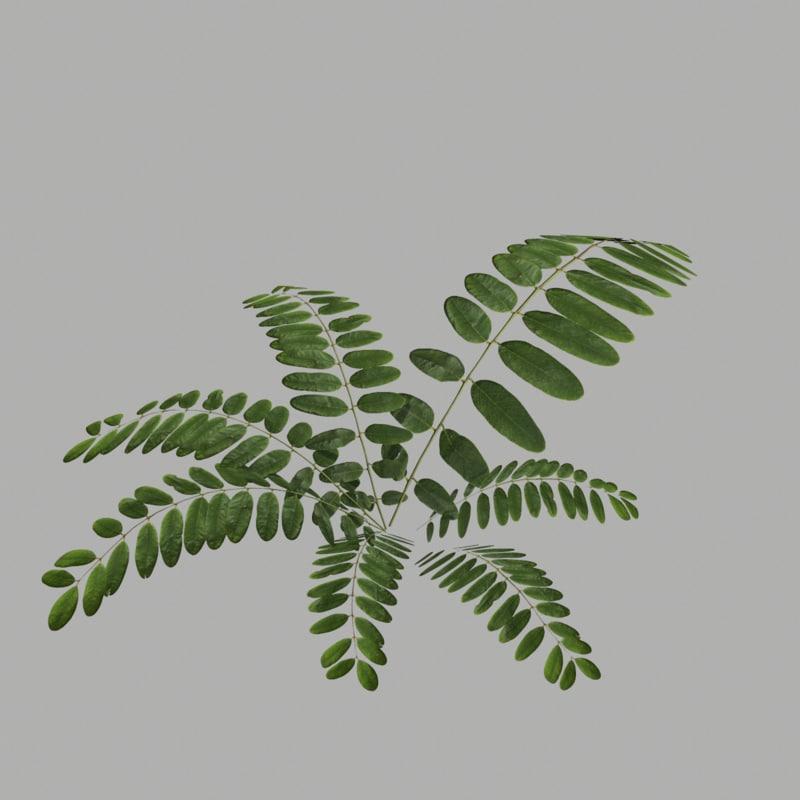 3d bush 19 model