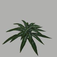3d model bush 20