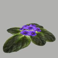 flower 2 fbx
