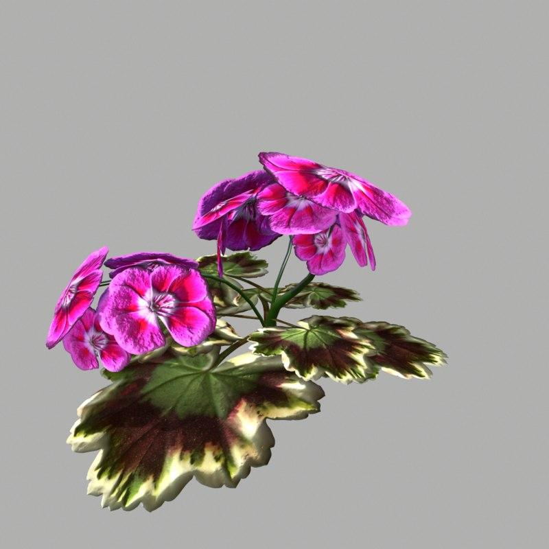 3d flower 3 model