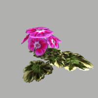 3d fbx flower 4