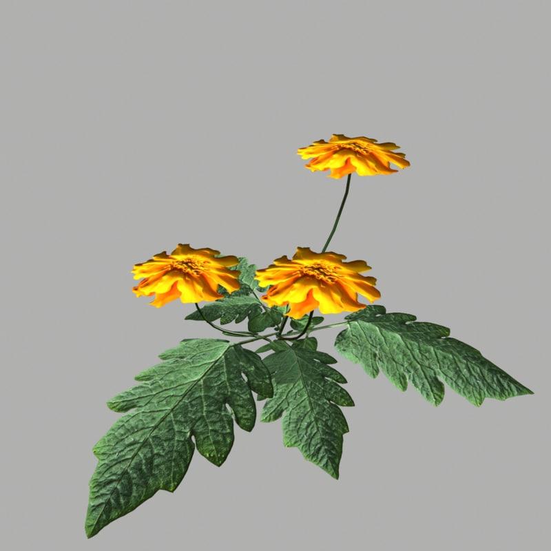 flower 7 3d model