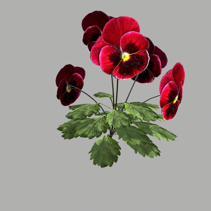 flower 10 x