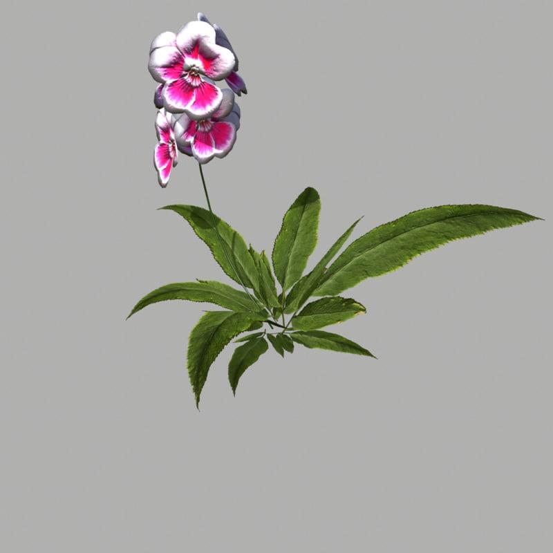 3d model of flower 16