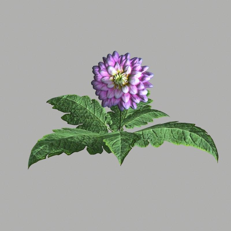 3d model flower 18
