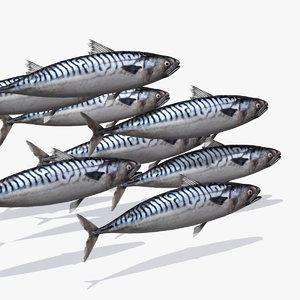 mackerel 3d model