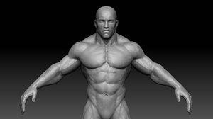 3d model muscular male body