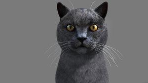 3ds max cat hairfarm animation