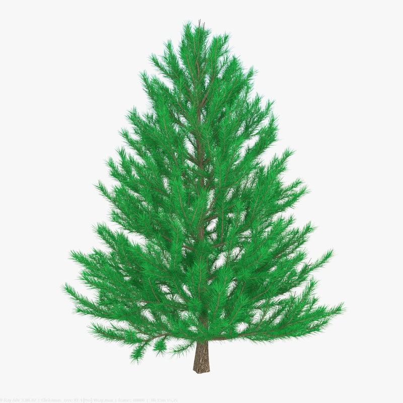 3d model christmass tree v1 spruce
