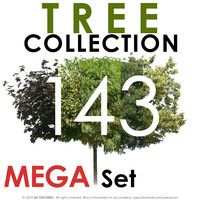 143 Tree Collection - MEGA Set