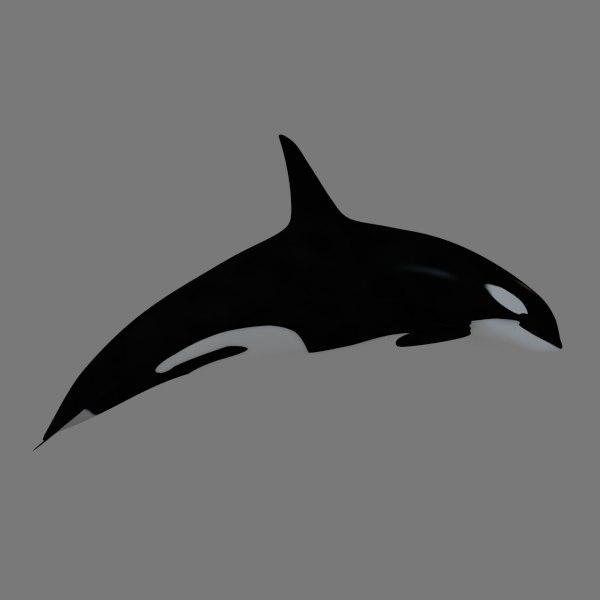 3d killer whale model