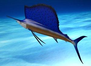 obj sailfish fish poses