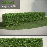 3d hedge 2 model