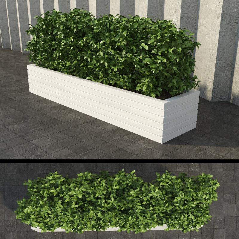 3d rectangular bush 2
