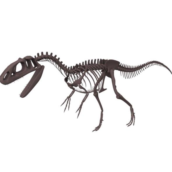 obj allosaurus skeleton dinosaur