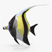 3ds max moorish idol yellow