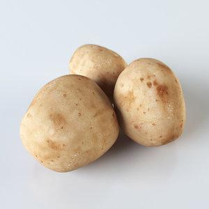 realistic potatoes obj