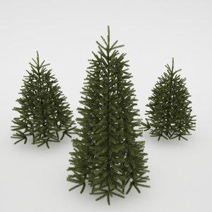 photorealistic fir-tree 3d max