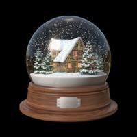 Snow Globe / House