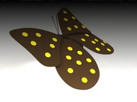 max butterfly invertebrate insect