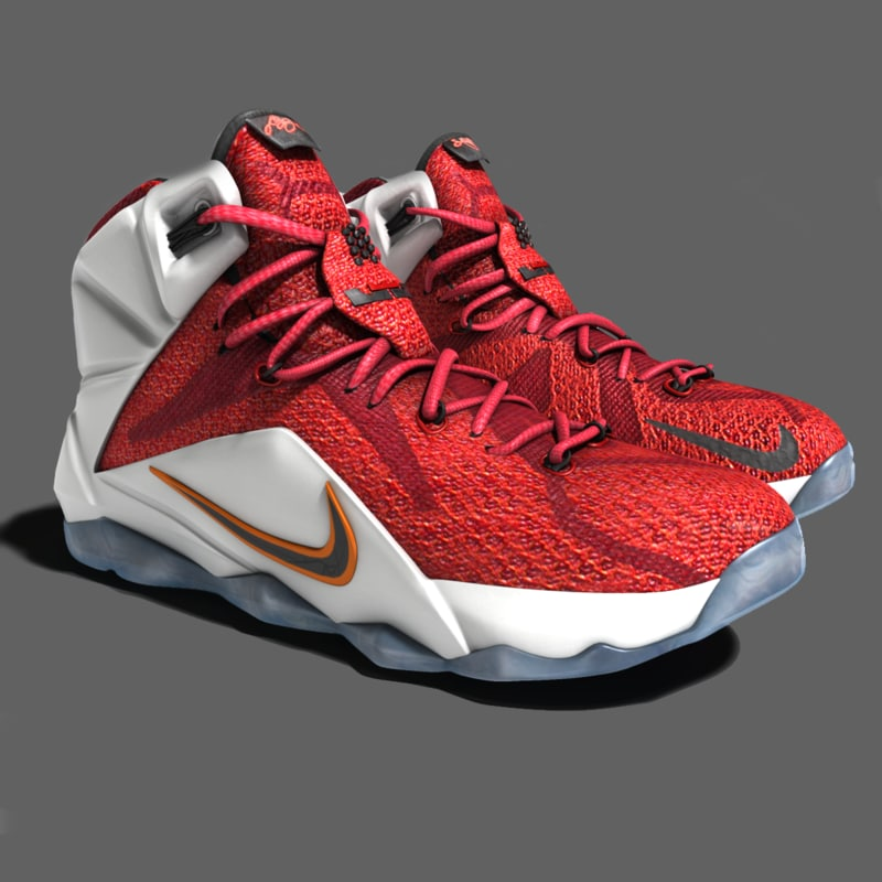 3d lebron james 12 shoes