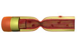 maya axon nerve cell