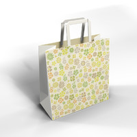 3ds shopping bag