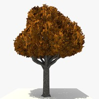 3ds cartoon tree