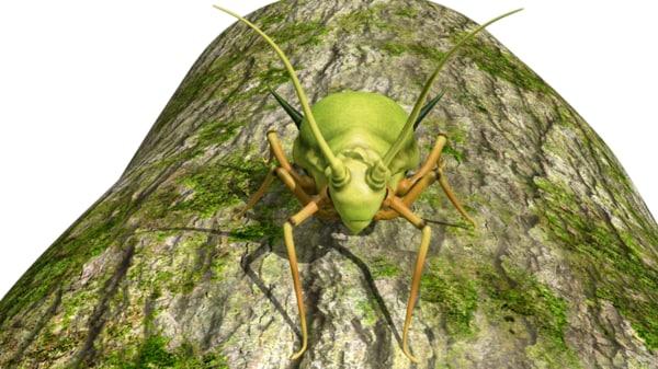 aphids plant greenflies 3d obj