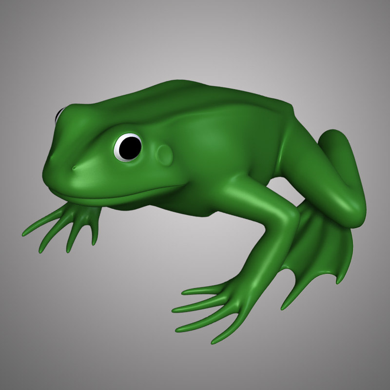 3ds frog anatomy body