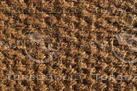 Carpet_Texture_0014