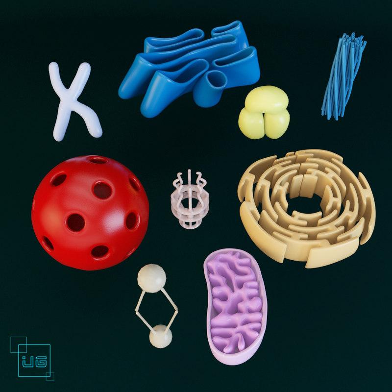 max cell mitochondria dna