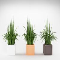 3d plant flowerpot max8